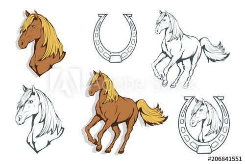 500x334 Set Of Horses. Hand Drawn Horse. Sketch Of Horse Head. Vector