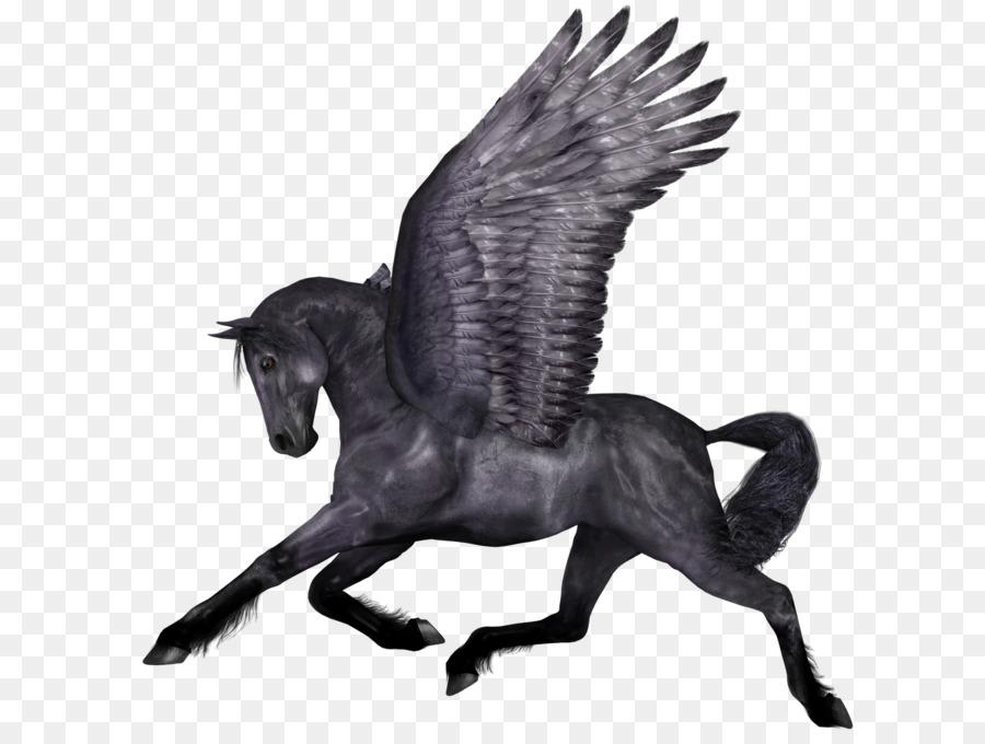 900x680 Horse Icon