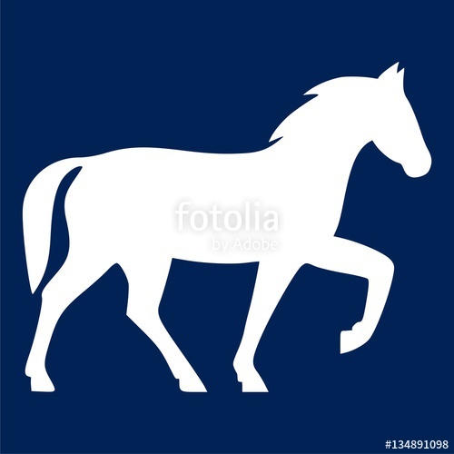 500x500 Horse Icon