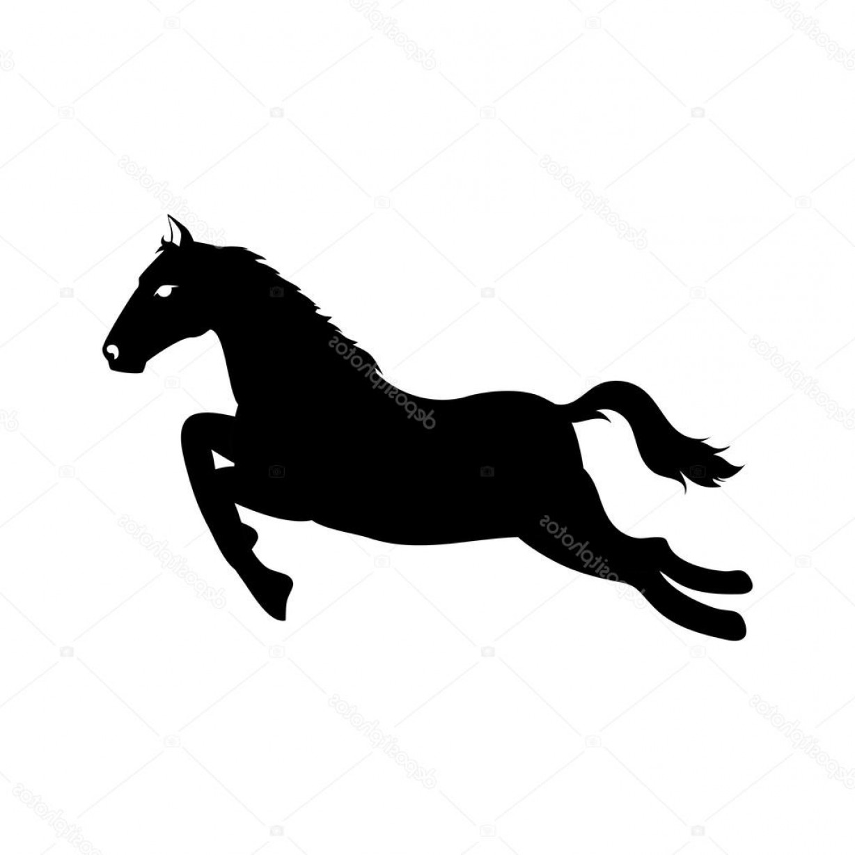 1228x1228 Stock Illustration Horse Ride Equine Icon Vector Shopatcloth