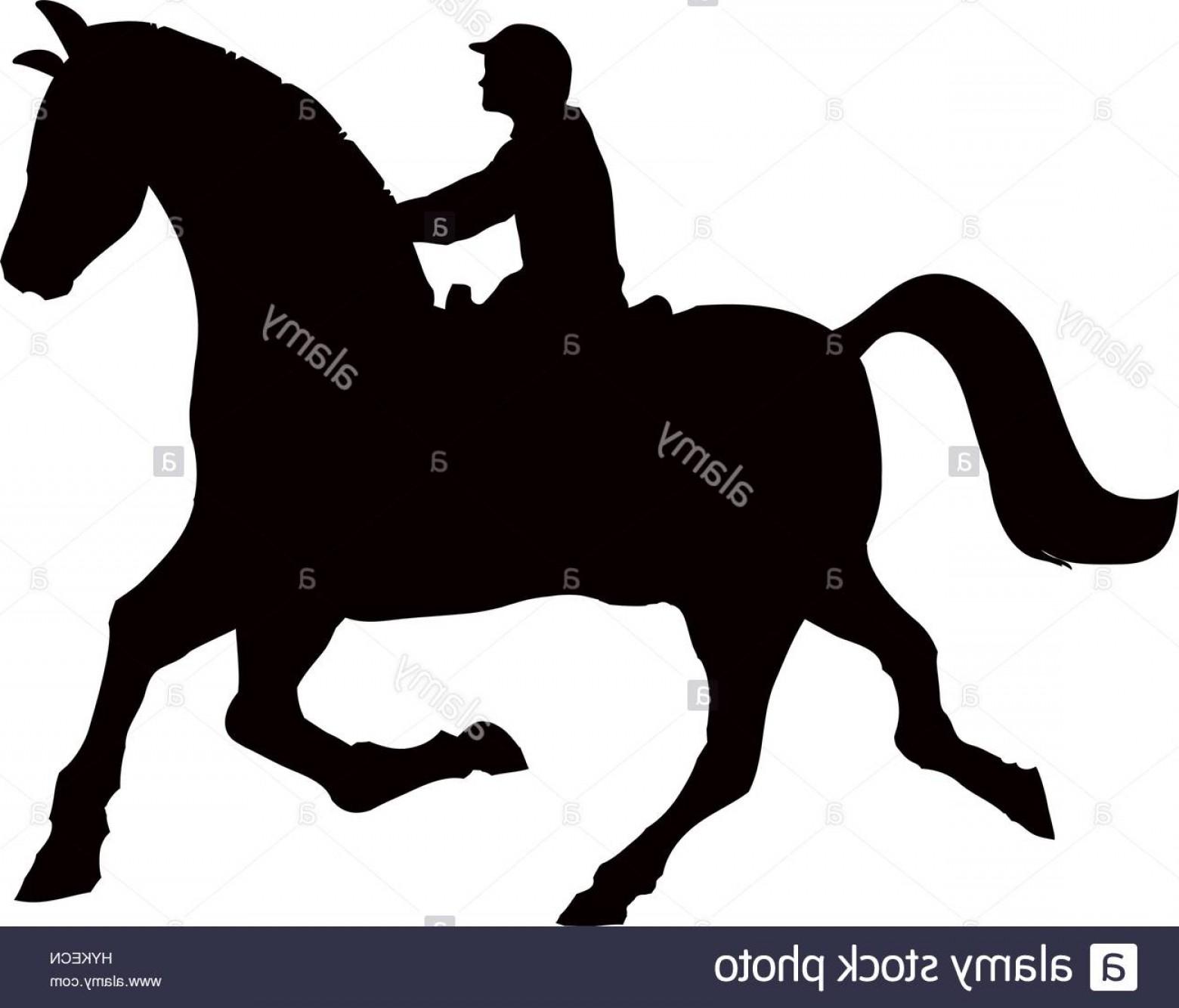 1560x1334 Stock Photo Horse Riding Equestrian Sport Icon Vector Illustration