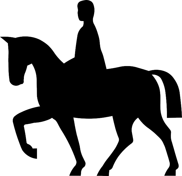 640x618 Collection Of Free Knight Vector Horse Silhouette. Download On Ubisafe
