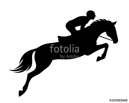 500x400 Horse Jumping On A White Background Stock Image And Royalty Free