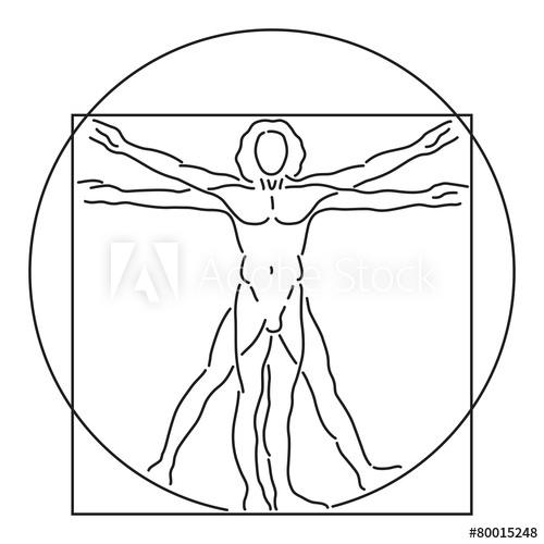 500x500 Leonardo Da Vinci Vitruvian Man, Human Anatomy, Vector Line Art