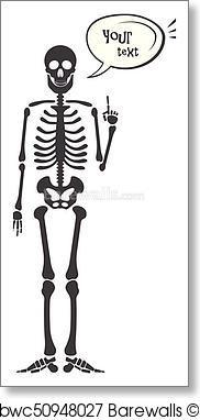 182x382 Art Print Of Skeleton Human Anatomy. Vector Halloween Black