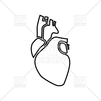 400x400 Human Heart Outline Icon Vector Image Vector Artwork Of