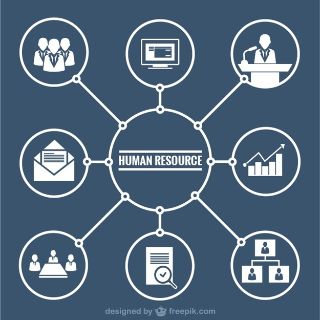 625x625 Human Resources Graphic Vector Free Download