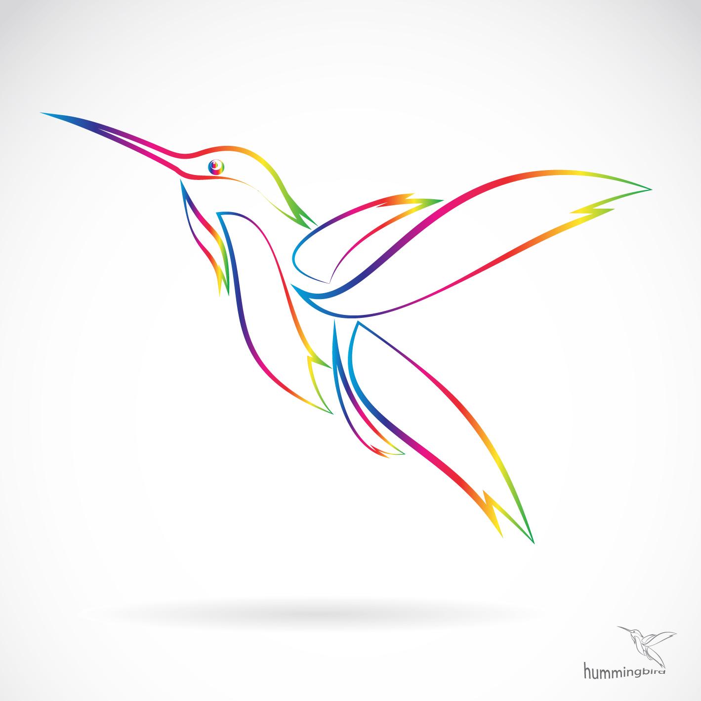 Hummingbird Vector