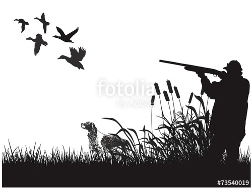 500x373 Duck Hunting Stock Image And Royalty Free Vector Files On Fotolia