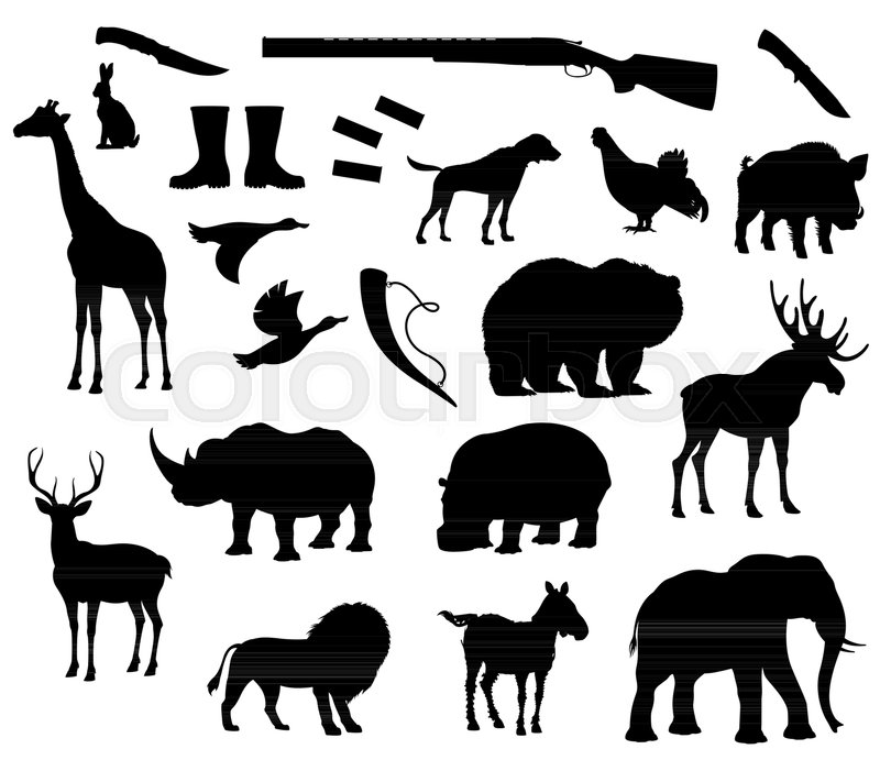 800x691 Animals Silhouette Isolated Icons For Hunting Club. Vector