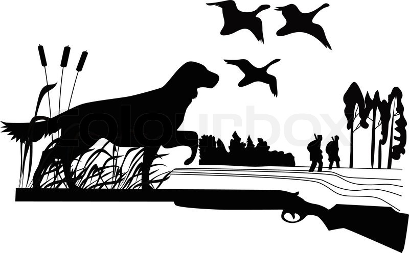 800x496 Dogs Of A Duck Hunt Nature A Vector The Gun On A White Background