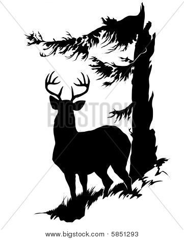361x470 Buck Stag Deer Cakes Hunting Hunting Vector Art