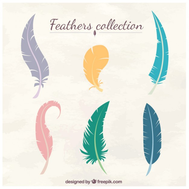 626x626 Feathers Vectors, Photos And Psd Files Free Download