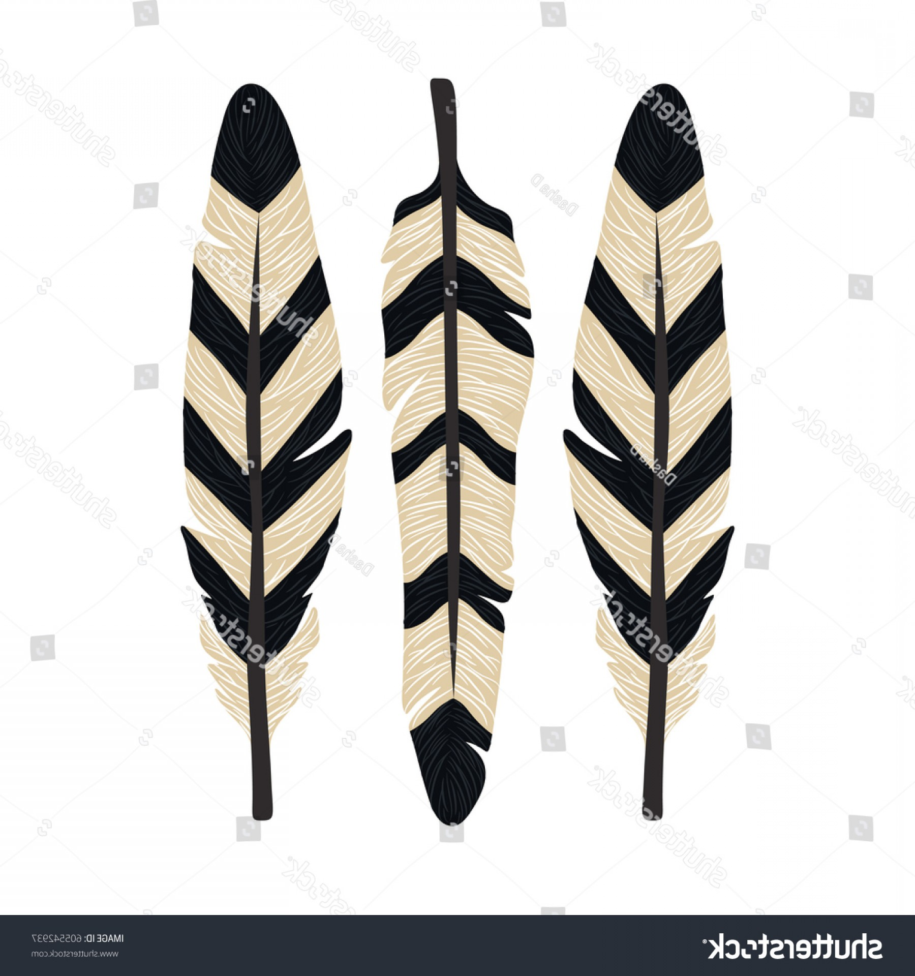 1800x1920 Vector Set Hand Drawn Indian Feathers Lazttweet