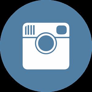 300x300 Instagram Icon Logo Vector (.ai) Free Download