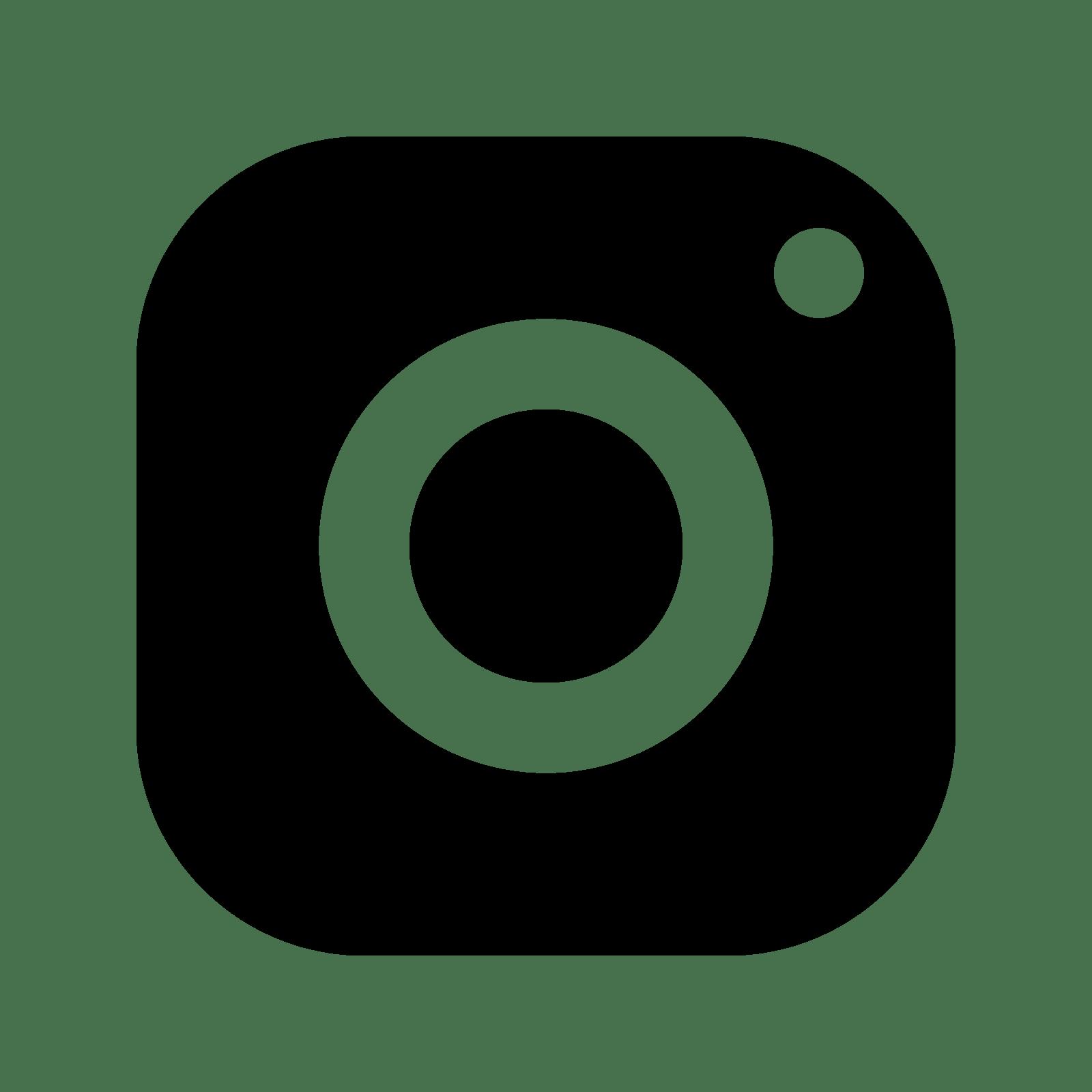 1600x1600 Instagram Icon Transparent Background