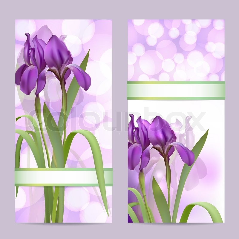 800x800 Set Of Spring Banners With Purple Iris Flowers Stock Vector