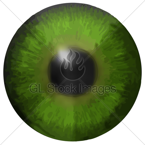 500x500 Eye Iris Vector Texture Gl Stock Images