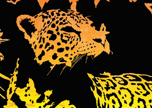 647x461 Jaguar Vector Vector Free Download