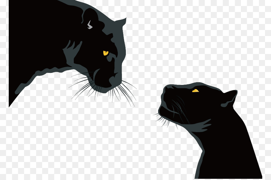 900x600 Black Panther Black Cat Leopard Cougar Jaguar