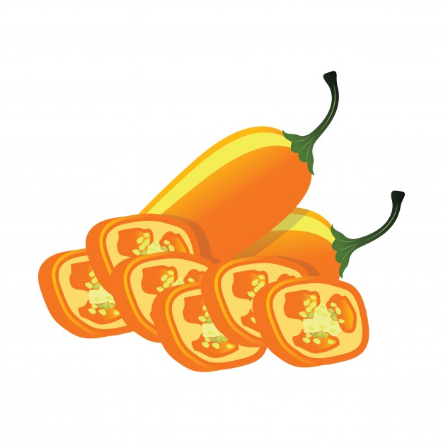 626x626 Jalapeno Vectors, Photos And Psd Files Free Download