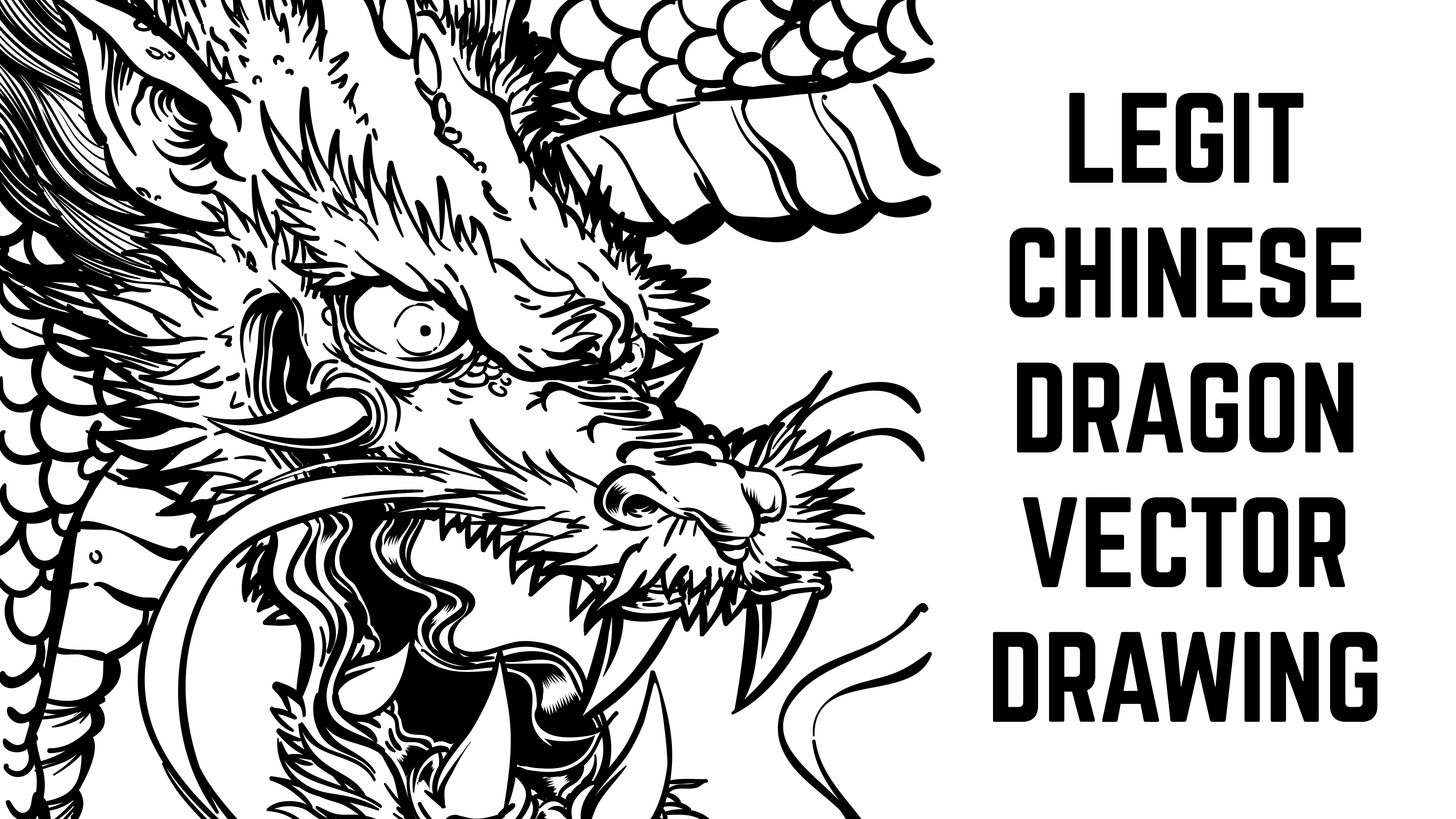 4000x2250 Legit Chinese Dragon Timelapse Vector Drawing