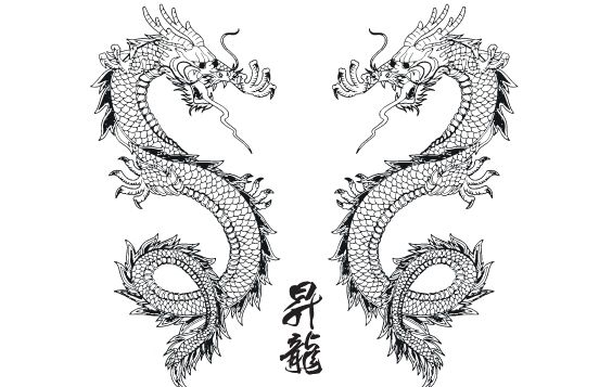 564x357 Vector Japanese Dragon Free Vector Download 174579 Cannypic
