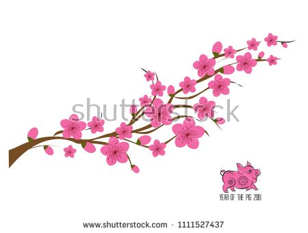 450x341 Japan Cherry Blossom Branching Tree Vector Illustration. Japanese