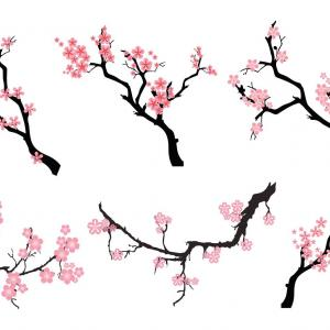300x300 Spring Branches Colors Nature Japan Blossoms Flower Tree Trees