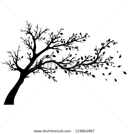 450x470 Cherry Tree Clipart Apple Tree Branch