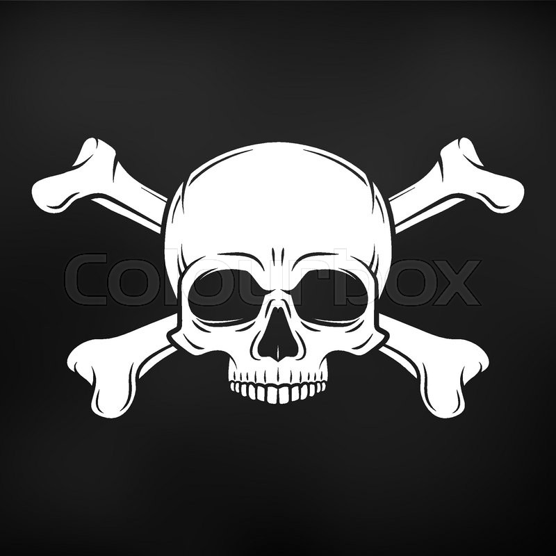 800x800 Human Evil Skull Vector On Black Background. Jolly Roger With