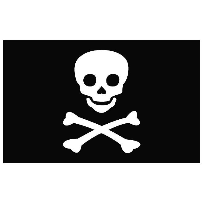660x660 Jolly Roger Vector Flag