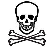224x200 Jolly Roger Vector Logo Design Human Skull, Danger Or Stock