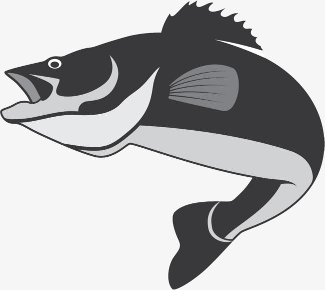 650x579 Fish Jump, Fish Vector, Jumping Fish, Jump Up Png And Vector For