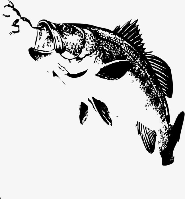 650x697 Fishing Hook, Jumping Fish, Jump Up, Fish Png And Vector For Free