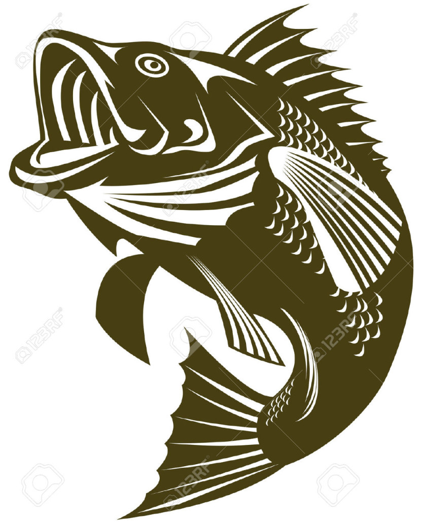 830x1029 Jumping Fish Vector Outline