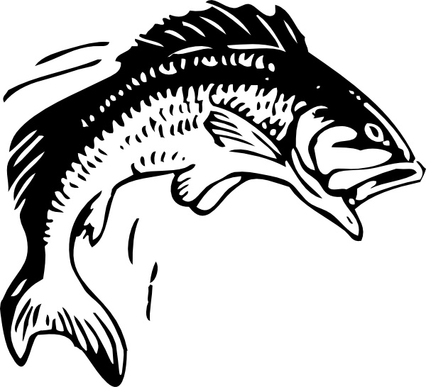 600x546 Jumping Fish Clip Art Free Vector In Open Office Drawing Svg