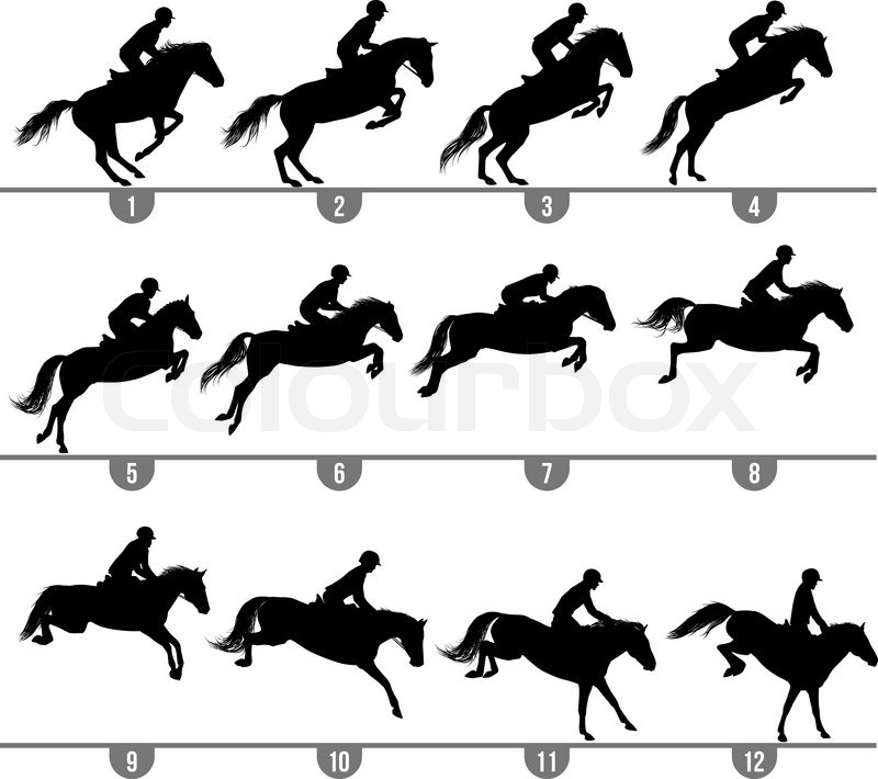 800x710 Set Of 12 Jumping Horse Phases Silhouettes Stock Vector Colourbox