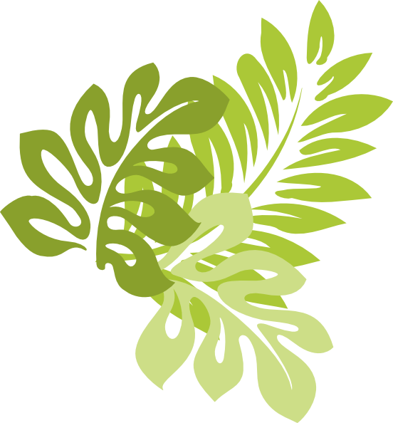 Jungle Leaves Vector
