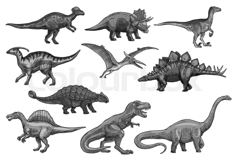 800x548 Dinosaurs Sketch Icons For Jurassic Park Design. Vector Isolated