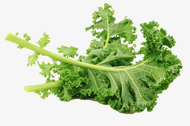 650x433 Kale Creative Photography, Photography Clipart, Vector, Kale Png