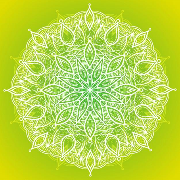 626x626 Color Circular Pattern. Round Kaleidoscope Vector Premium Download