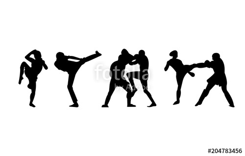 500x318 Kickboxing, Mma And Muay Thai Kicks And Punches Silhouettes Stock