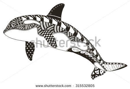 450x308 Killer Whale Zentangle Stylized, Vector, Illustration, Freehand