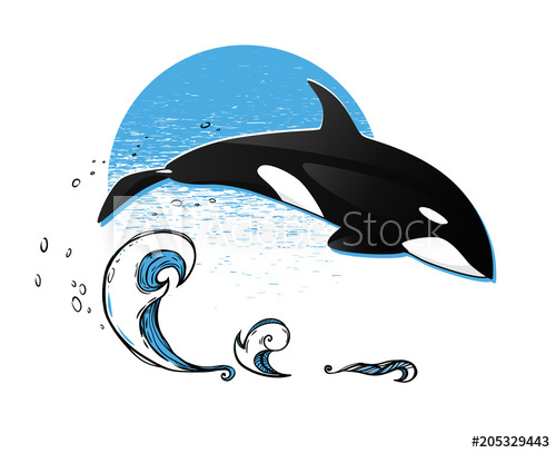 500x407 Jumping Killer Whale. Vector Graphic Illustration. The Orca Above