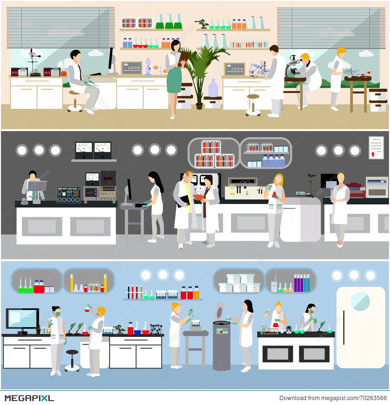 800x830 Scientist Working In Laboratory Vector Illustration. Science Lab