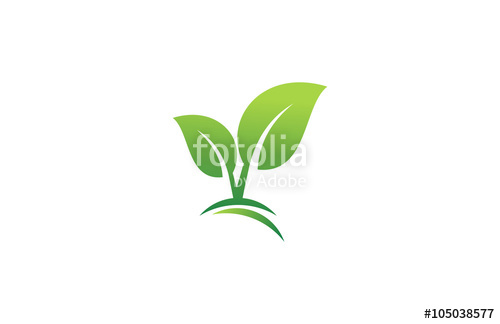 500x324 Green Leaf Plant Landscape Logo Stock Image And Royalty Free