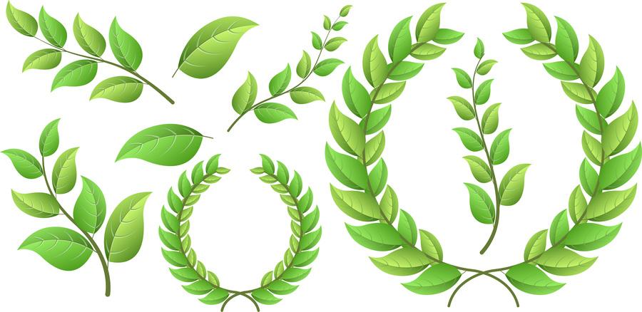 900x438 Download Laurel Wreath Vector Clipart Laurel Wreath Clip Art