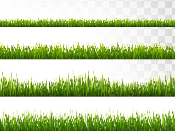 Lawn Vector