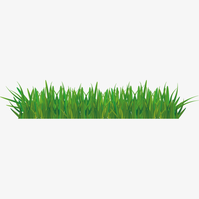 650x651 Green Lawn Vector Material, Green Vector, Green, Meadow Png And